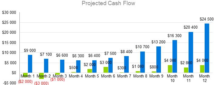 Mobile Application Development Business Plan - Projected Cash Flow