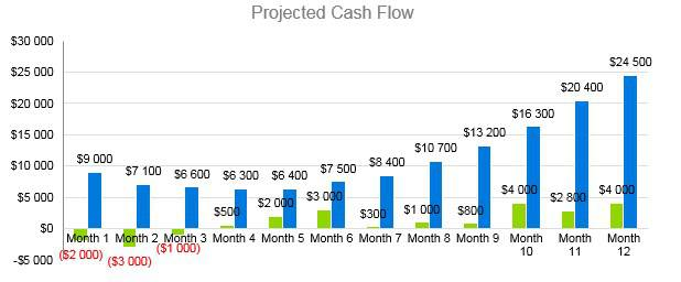 Home Inventory Business Plan - Projected Cash Flow