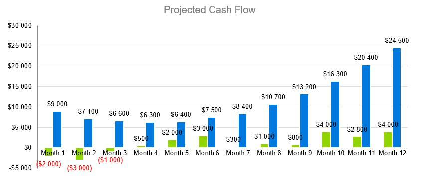 Projected Cash Flow - Funeral Home Business Plan