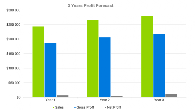 Hair Extensions Business Plan - 3 Years Profit Forecast