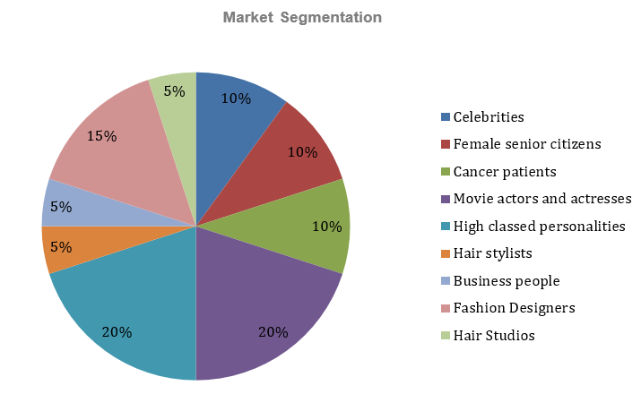 Hair Extensions Business Plan - Market Segmentation