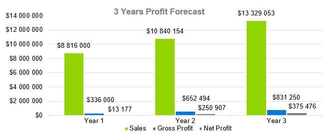 Headhunter Business Plan - 3 Years Profit Forecast