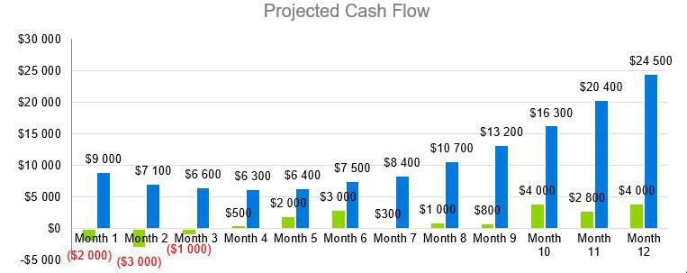 Headhunter Business Plan - Projected Cash Flow