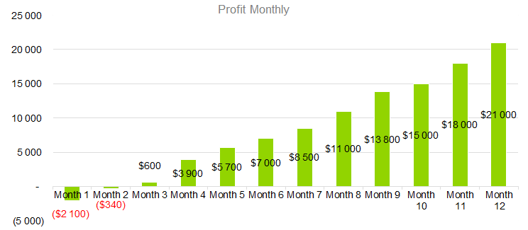Lazer Hair Removal Business Plan - Profit Monthly