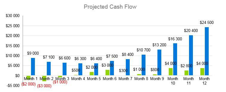 Senior Daycare Business Plan Example - Projected Cash Flow