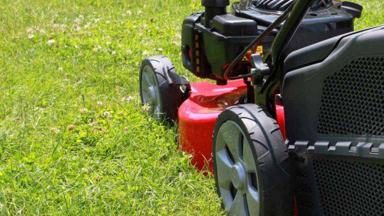 Lawn Mowing Business Plan pdf