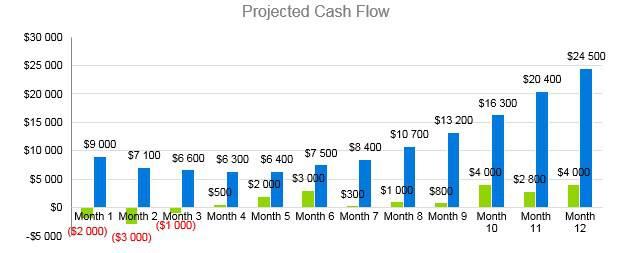 Car Accessories Business Plan - Projected Cash Flow