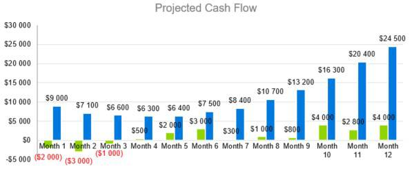 Projected Cash Flow - Photography Business Plan Template