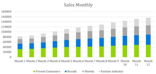 Sales Monthly - Photography Business Plan Template
