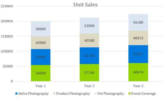 Unit Sales - Photography Business Plan Template