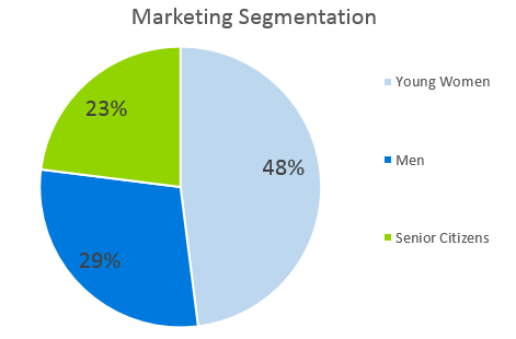 Mobile Spray Tan Business Plan - Marketing Segmentation