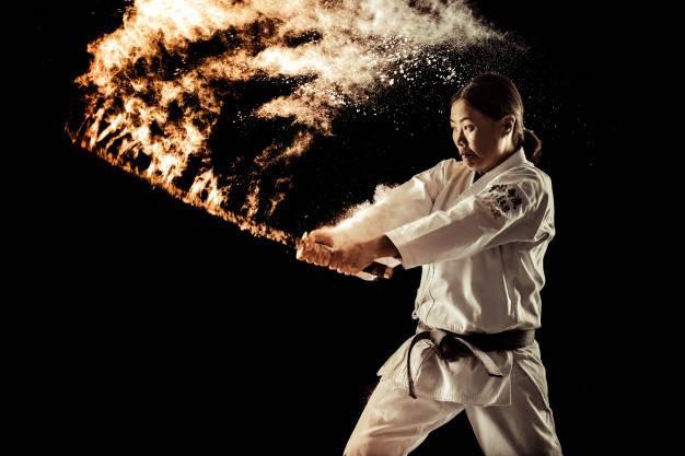 Martial art Business