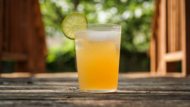 lemonade stand business plan