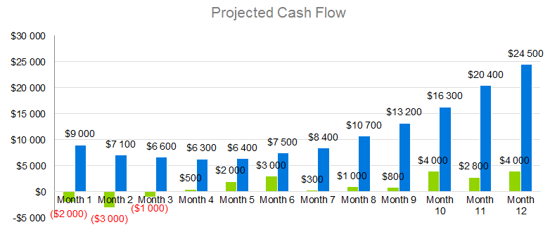 Technology Business Plan - Projected Cash Flow
