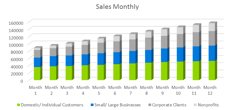 Technology Business Plan - Sales Monthly