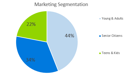 Ecommerce Business Plan - Marketing Segmentation