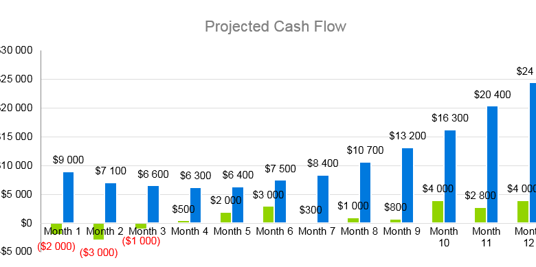 Home Helth Care Business Plan - Project Cash Flow