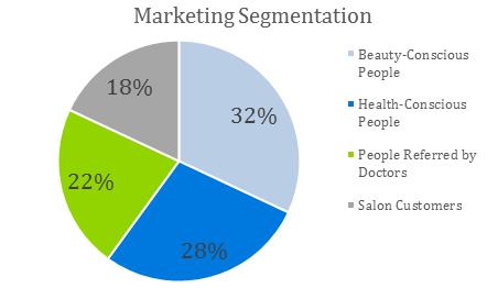 Spa Business Plan Sample - Marketing Segmentation