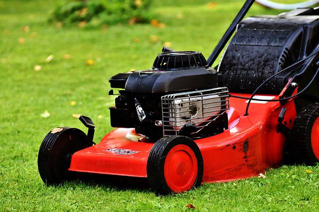 starting lawn care business plan