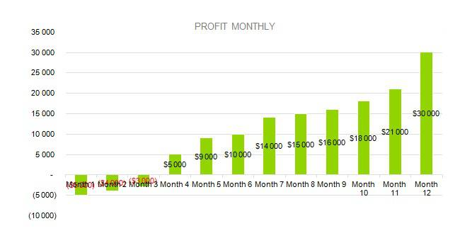 PROFIT MONTHLY - Baby Clothes Business Plan Sample