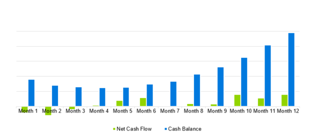 Art Gallery Business Plan - Projected Cash Flow Diagram