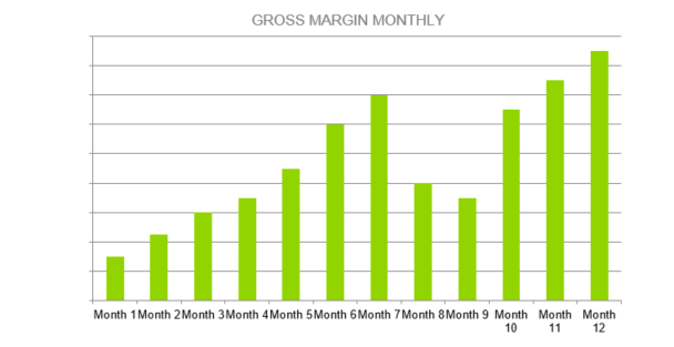 Gas Station Business Plan - GROSS MARGIN MONTHLY