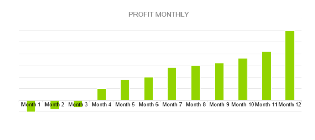 Web Hosting Business Plan - PROFIT MONTHLY