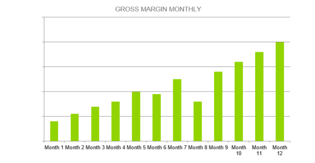 Window Cleaning Business Proposal - GROSS MARGIN MONTHLY
