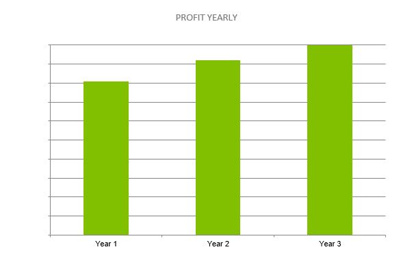 Climbing Gym Business Plan - PROFIT YEARLY