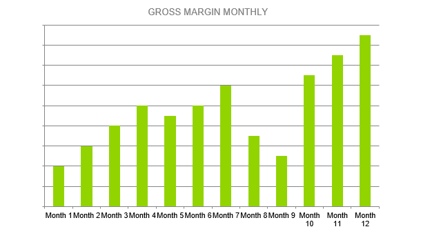 Solar Farm Business Plan - GROSS MARGIN MONTHLY