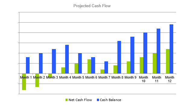 Solar Farm Business Plan - Projected Cash Flow