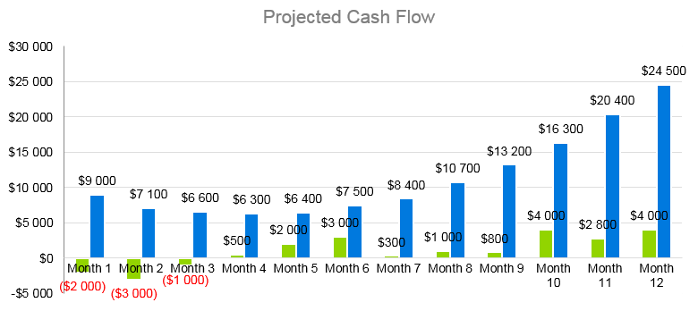 Drone Business Plan - Projected Cash Flow