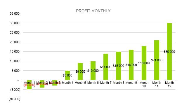 Financial Advisor Business Plan -Profit Monthly