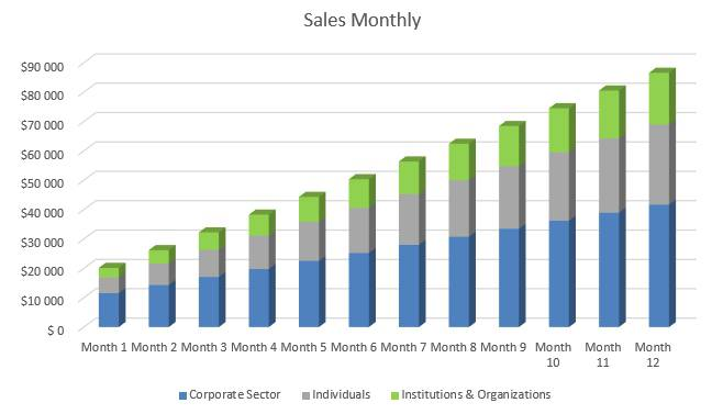 Financial Advisor Business Plan - Sales Monthly