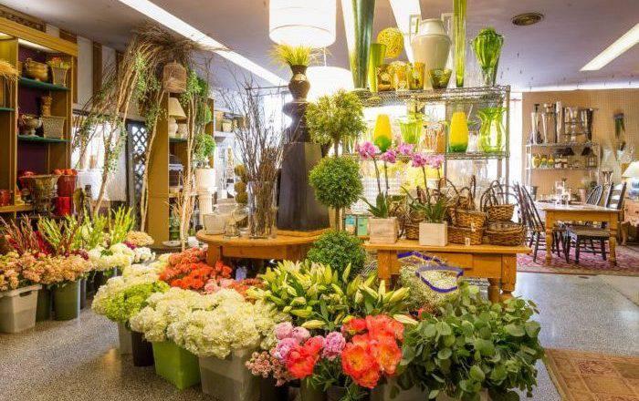 Business Plan for Florist OGScapital.com