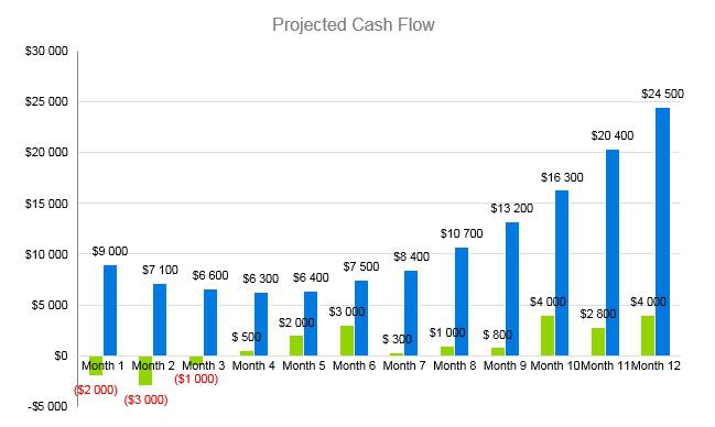 Subway Business Plan - Projected Cash Flow