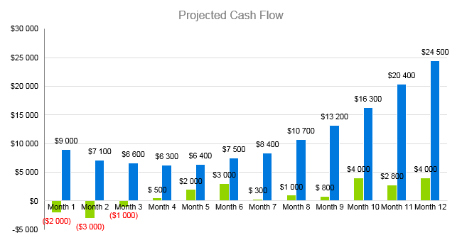 Tanning Salon Business Plan - Projected Cash Flow