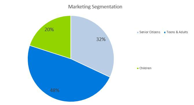 Cell Phone Business Plan - Marketing Segmentation