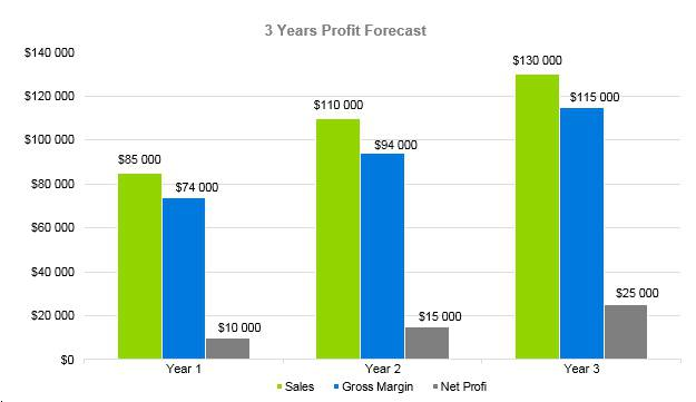 Cyber Security Business Plan - 3 Years Profit Forecast
