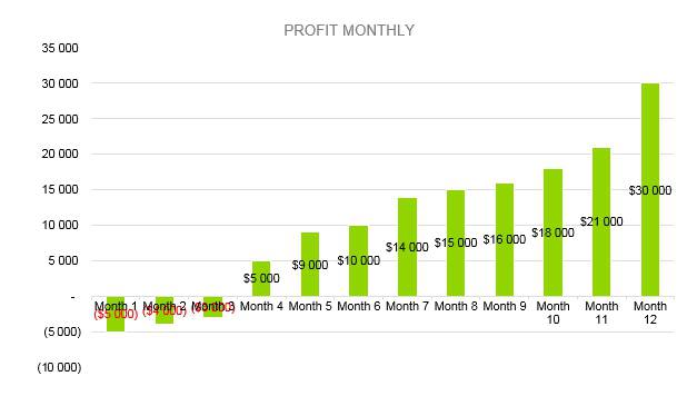 Cyber Security Business Plan - Profit Monthly