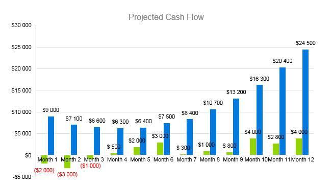 Nursing Home Business Plan - Projected Cash Flow