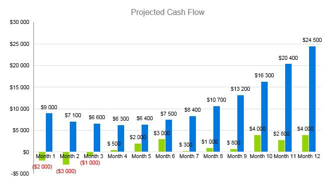 Trampoline Business Plan - Projected Cash Flow