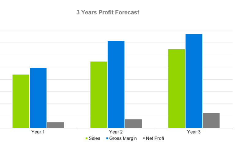 3 Years Profit Forecast