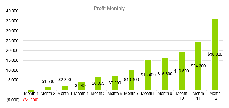 Dump Truck Business Plan - Profit Monthly