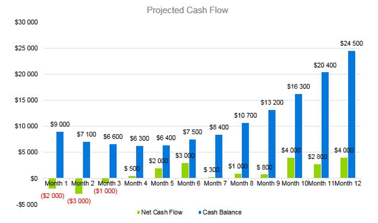 Engineering Consulting Business Plan - Projected Cash Flow