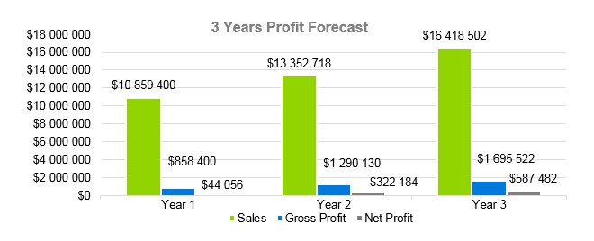 Airline Business Plan - 3 Years Profit Forecast