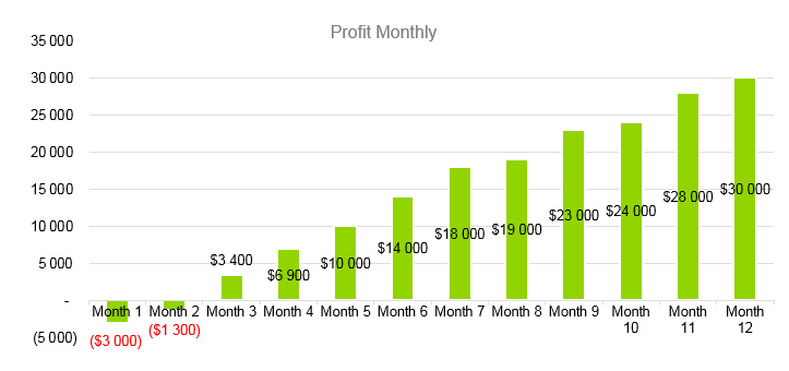 Airline Business Plan - Profit Monthly
