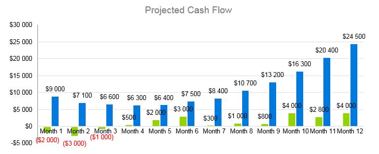 Airline Business Plan - Projected Cash Flow