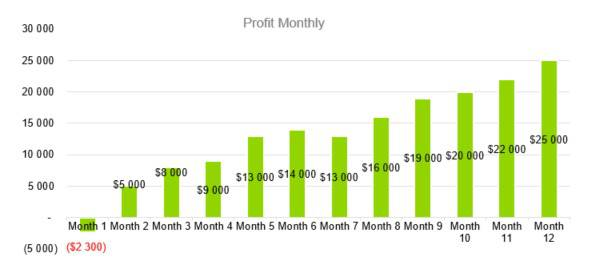 Amusement Park Business Plan - Profit Monthly