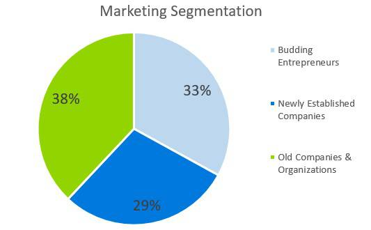 Business Consulting Firm Business Plan - Marketing Segmentation